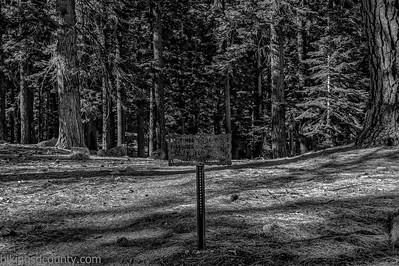 20141018Pohono Trail_DSC4704-Edit-Edit
