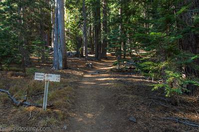 20141018Pohono Trail_DSC4709-Edit