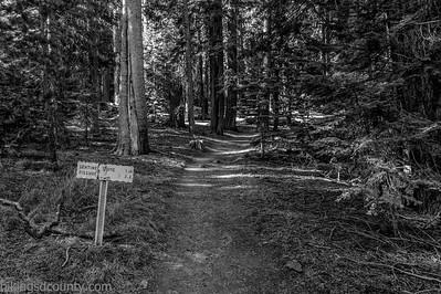 20141018Pohono Trail_DSC4709-Edit-Edit
