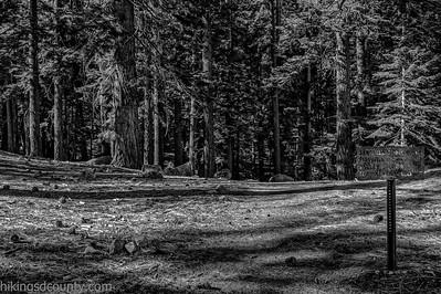 20141018Pohono Trail_DSC4705-Edit-Edit