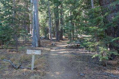 20141018Pohono Trail4708