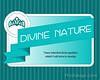 Divine Nature - 8x10