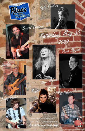 Blues in the Schools poster 8 artists