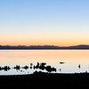 Mono Lake Alpine Glow