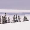 Snow Shelf