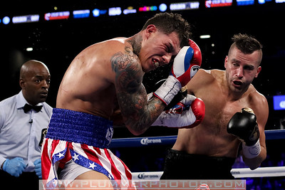 Boxing 2014 -David Lemieux. vs. Gabriel Rosado