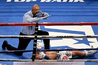 Boxing 2017 - Ray Beltran Defeats Jonathan Maicelo by Second Round KO