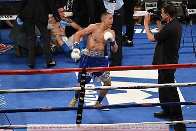 Boxing 2017 - Teofimo Lopez III Defeats Ronald Rivas by Second Round KO