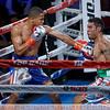 BOXING 2016 - Felix Verdejo Defeats Juan Jose Martinez by TKO