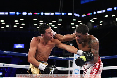 Boxing 2014 - Lamont Roach, Jr. vs. Alexander Charneco