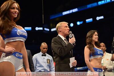 Boxing 2013 - Peter Quillin vs. Fernando Guerrero