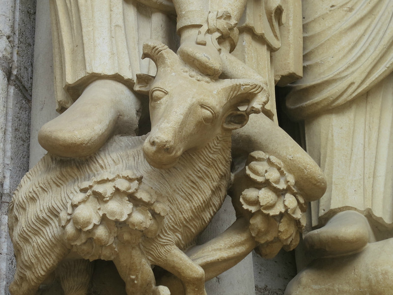 Chartres Cathedral, The Lamb at the Feet of Isaac