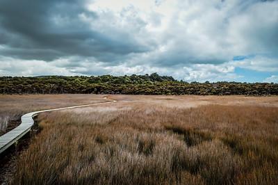 Tautuku Estuary