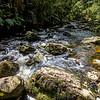 McLean Falls Trail