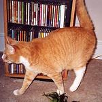 Stan.  October 2001.