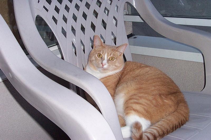 Stan on the balcony.  September 2002.