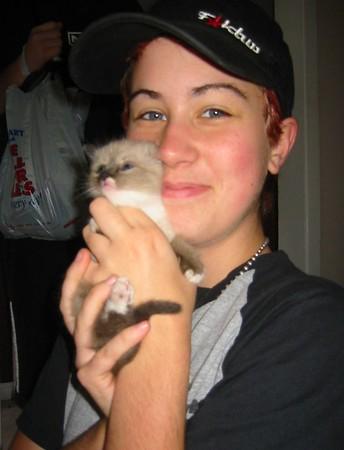 Amanda & Jeff's New Kitties!