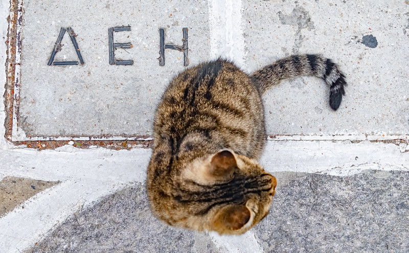 Greek Catology
