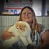 2016-01-16_P1164832_Skyway Cat Club Show,Largo,Fl