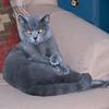 05-10-10 Princess Bonnie