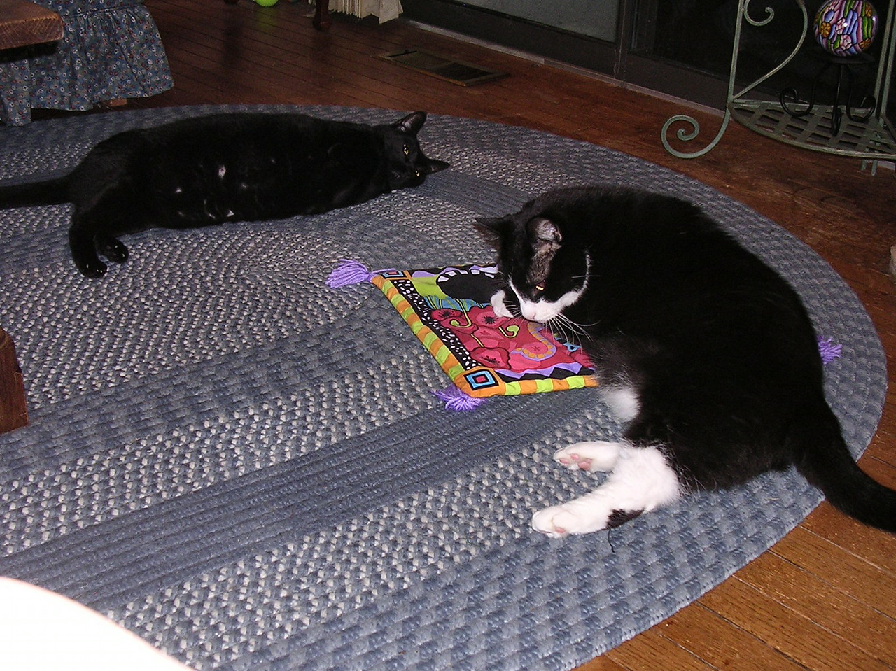 VAL: I'm so glad they brought me this present.  FRIDAY: Isn't he <i>ever</i> going to let me have a turn?
