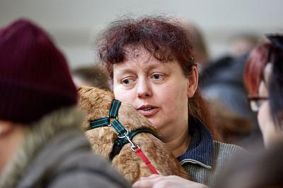 Plecharna, 5. Umisťovací výstava koček bez domova