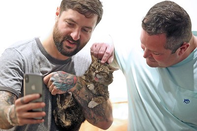 The first ever Catsbury Park Cat Convention was held this past weekend in Asbury Park. Celebrity cats Lil Bub and Teddy and Stache were on hand along with The Kitten Lady, Paul The Cat Guy and many others. Lil Bub welcome her fans during a meet and greet session. (MARK R. SULLIVAN/THE COAST STAR)