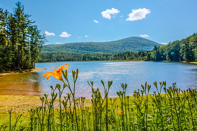 Cooper Lake, Woodstock, New York, USA
