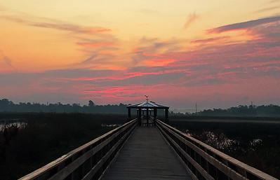 Cattail Marsh   9-14-17