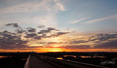 Cattail Marsh - Sunrise Composite