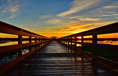 021617_Cattail_Marsh_Beaumont_Boardwalk_Sunrise_750_0013