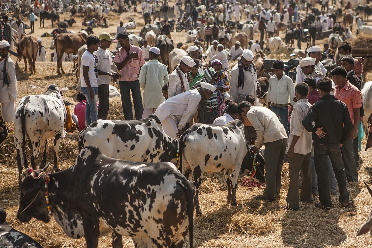 Rural Bazar of Rajur, Maharashtra, India