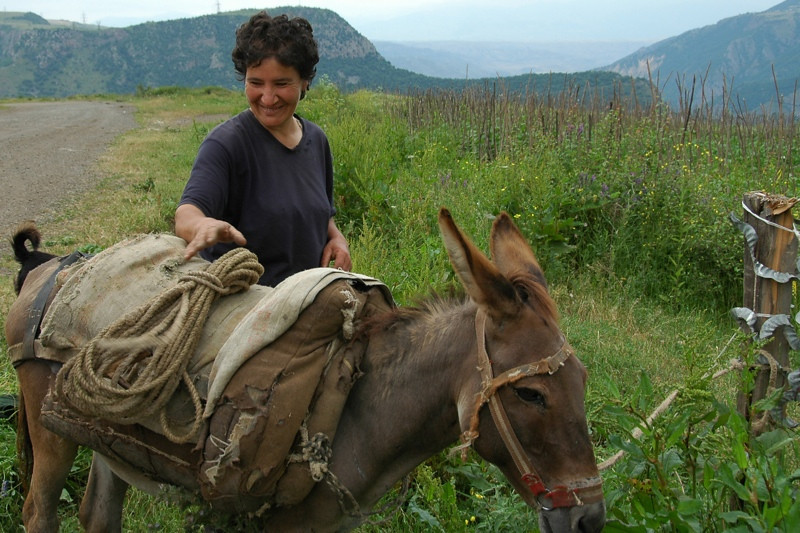 Feeding the Donkey - Tatev, Armenia