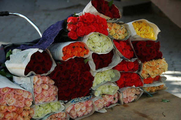 Colorful Bouquets of Roses - Yerevan, Armenia
