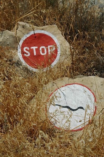 Snake Signs - Gobustan, Azerbaijan