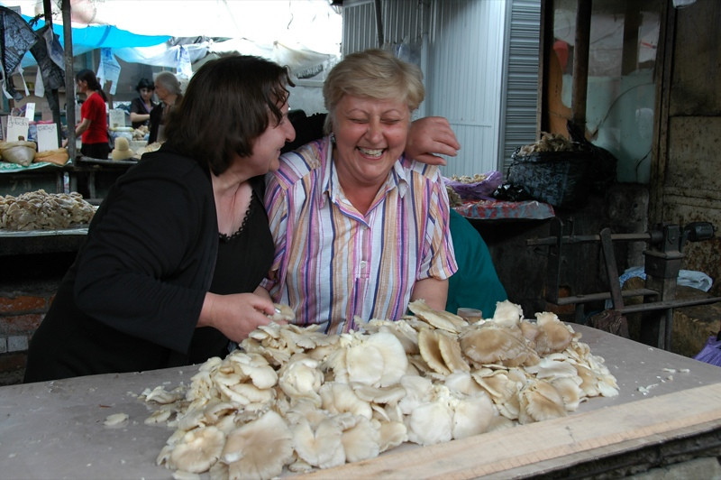 Mushrooms at Telavi Market - Kakheti, Georgia