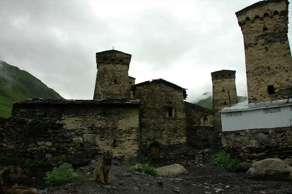 Svan Towers and Guard Dog - Svaneti, Georgia