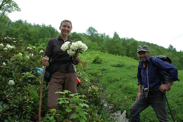 Bouquet of White Flowers - Svaneti, Georgia