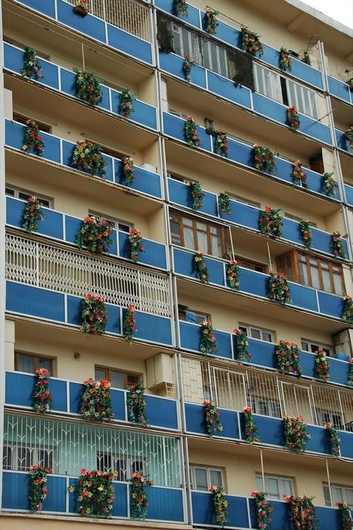 Plastic Flowers as Apartment Decor - Tbilisi, Georgia