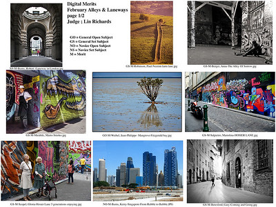 1 Digital Merits  February Alleys & Laneways page 1