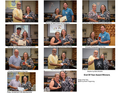 12 End Of Year Award Winners