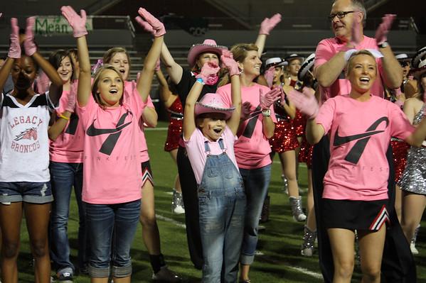 2012 Pink Glove Dance
