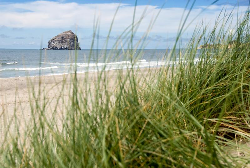 Haystack Rock through the Beach Grass<br /> Pacific City, Oregon<br /> July 2007<br /> <br /> Copyright © 2007 Rick Kruer<br /> rickkruer.com<br /> <br /> D200_2007-07-15DSC_1946-BeachHaystackRockThruGrass-2.psd