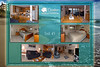 "Montage of ""Unit 45 - Cavalier Beachfront Condominiums, Gleneden Beach, Oregon"" photos: background is 8047-5227, from upper left to right: 9593, 1187, 9573--9576, 9569--9571, 1205--1212.<br /> <br /> March, July 2009<br /> <br /> Copyright © 2009 Rick Kruer rickkruer.com (rick@kruer.name)<br />   <br /> MONTAGE-CavalierCondo-Unit45-D200_July2009-DSC_8047-5227_9593_1187_9573--9576_9569--9571_1205--1212-4.psd"