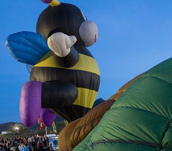 Cave Creek Balloon Festival 4 January 2014 015