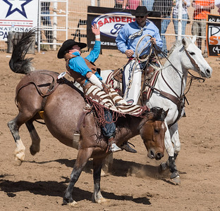 Cave Creek Rodeo 30 March 2014 013