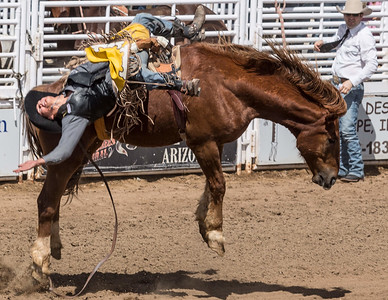 Cave Creek Rodeo 30 March 2014 007