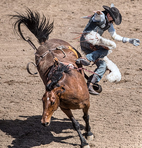 Cave Creek Rodeo 30 March 2014 026