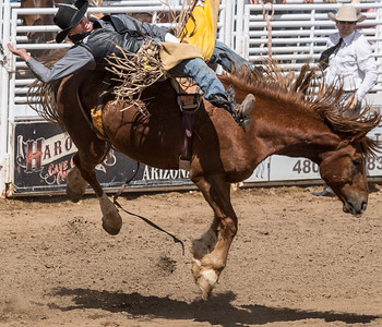 Cave Creek Rodeo 30 March 2014 008
