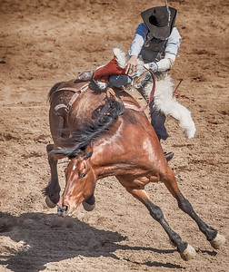 Cave Creek Rodeo 30 March 2014 027